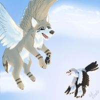 Flying in the Sky by StormFalconFire