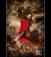 Fable 2 by dlf1979