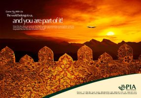 PIA Domestic NWFP Ad by creavity