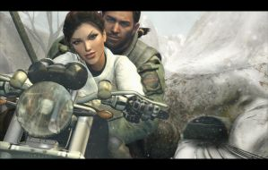 Lara Croft and Chris Redfield - A New Beginning by raccooncitizen