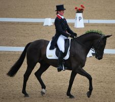 Dressage 27 by equinestudios