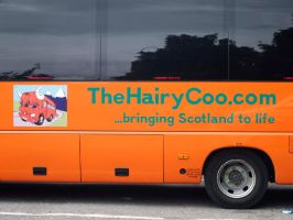 The Hairy Coo by piglet365