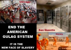 End the American Gulag System by Valendale