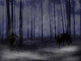 Wolves at Night by ClaireSable
