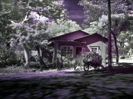 Old House infrared 001 by otas32