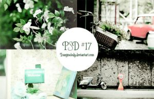 PSD #17 by TrangMelody