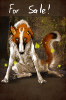 ADOPT BORZOI auction CLOSED by Do-El