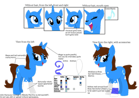 Official Reference Sheet - Ally Harmony (no BG) by Melody-The-Fox
