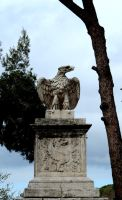 Eagle Rome ... by DemonSD