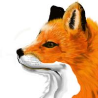 Fox number 3 by TheDreamerWithin616