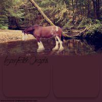 Apersonallayout21 by Imperfectionphotos