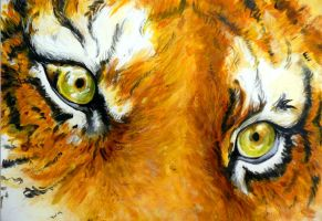 Tiger Eyes by xChelseax92