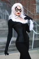 Black Cat III by EnchantedCupcake