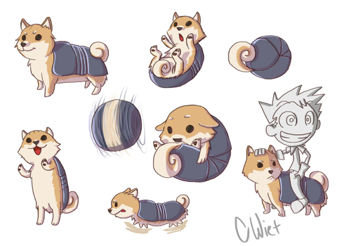 Armadillo Dog by CWiet