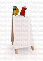 Macaws on Sign Stock by Shoofly-Stock
