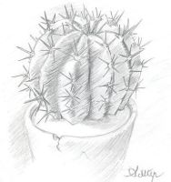 Cactus in a Pot by Ambair