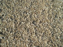 Stock: Coral pebbles texture by AntiRetrovirus