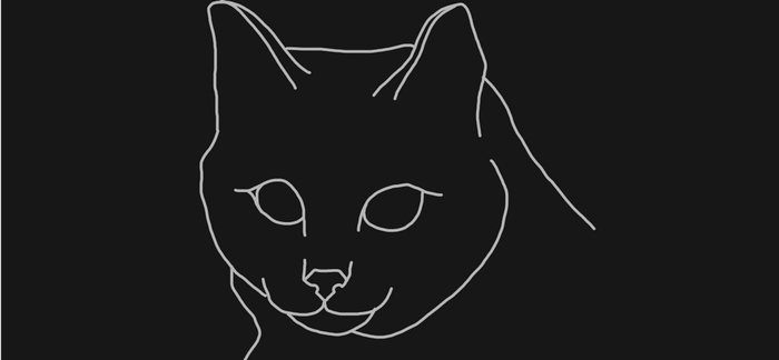Cat gif by sparklingarse