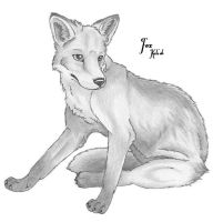 Request For Ilyana - Fox by carrie-warwick