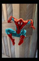 The Amazing SpiderMan by ErikVonLehmann