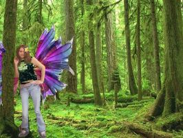 Fairy In the Forest Edited by EnviousEyes-InLove16