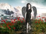 Angel in Poppies WP by oibyrd