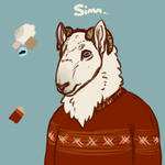 Simm by 4DCube
