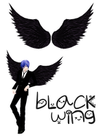 Black Wing by yuwa23