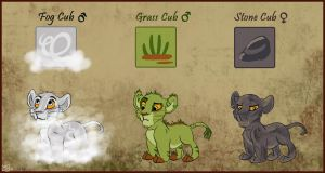 Naturalis Lions - Fog, grass and stone by Juffs