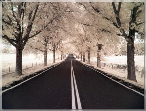 The Road To Tenterfield 2 by JohnK222