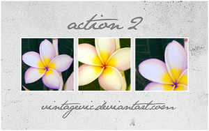 Action 2 by vintagevic