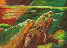 Murky Waters ACEO by Redwall151
