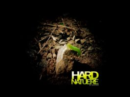 HARD NATURE by deScign
