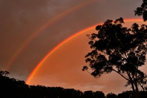 Our first rainbow by wildplaces