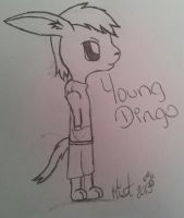 Young Dingo by ShinyMisty