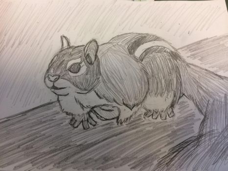 SQUIRREL!!!! by FoolsPeace