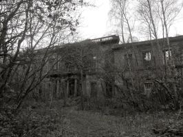 Further Decay by celtes