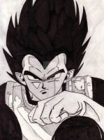 Dragon Ball Z: Vegeta by Taskmaster09