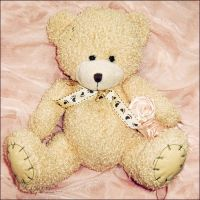 teddy by a-place4my-head