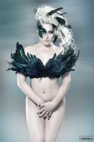 Black Feather by JenHell66