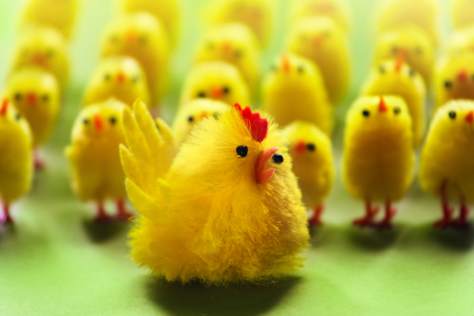 Chicken Army by Rustmouth