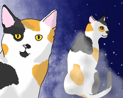 Calico Twins - Finchclaw and Larkfoot by Chrysanthe-mums