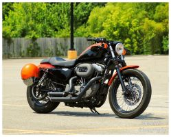 A Harley Davidson 1200 Sportster by TheMan268