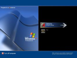 WinXP Pro Experience by thecat2000