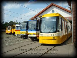 Trams of Szeged 1 by Nyili