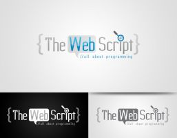 The Web Script by hamzahamo