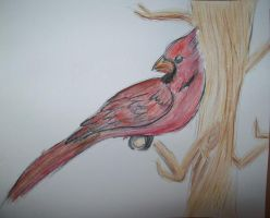 Go cards 1-sold by Shadowash1