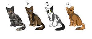 Cat Adoptables | CLOSED by RosaliewolfAdopts