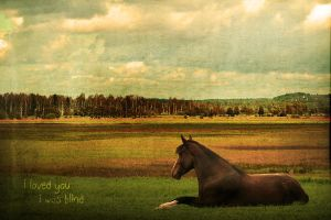 i was blind by lesliemarie-manips