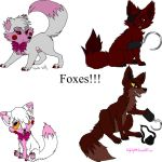 Foxes! by KuranaMinamino